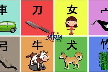 Tổng hợp bảng chữ cái hiragana đầy đủ và hướng dẫn cách đọc