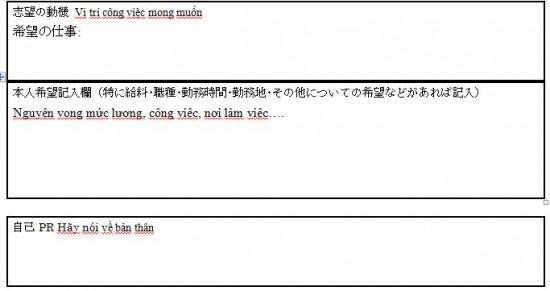 Các câu hỏi chuyên môn trong CV tiếng Nhật