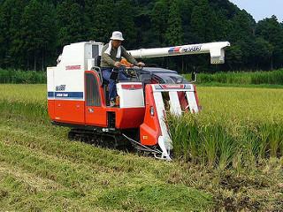 Nền nông nghiệp nhật bản phát triển
