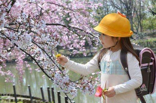 Tên tiếng Nhật hay và ý nghĩa dành cho các bạn nữ