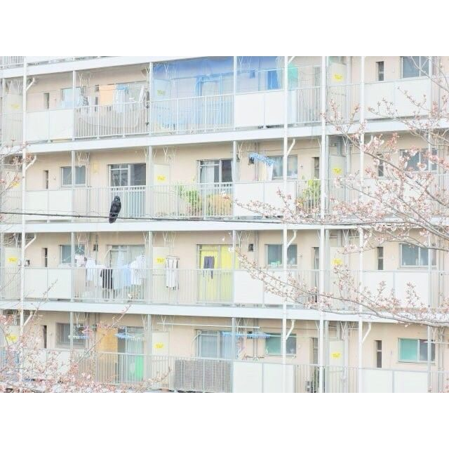 Cách tìm nhà trọ cho du học sinh Nhật Bản