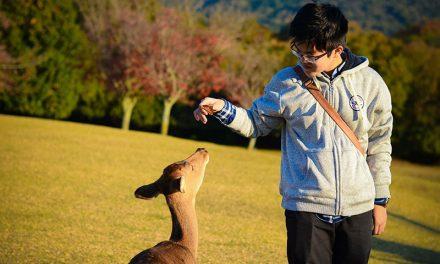 """19 tuổi du học Nhật Bản: """"Nếu đã có mục tiêu thì không nên chần chừ"""""""