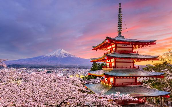 Tổng hợp link download tài liệu tiếng Nhật miễn phí hay nhất