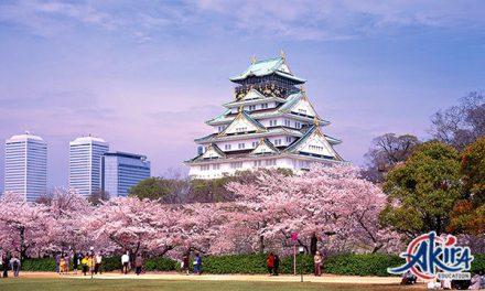 Du học Osaka Nhật Bản – Chi phí bao nhiêu? Nên học trường nào?