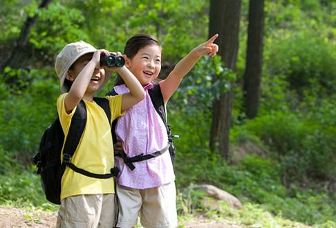 Trẻ em Nhật tham gia dã ngoại