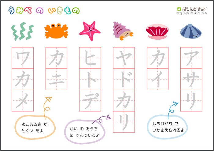 Luyện đọc bảng katakana