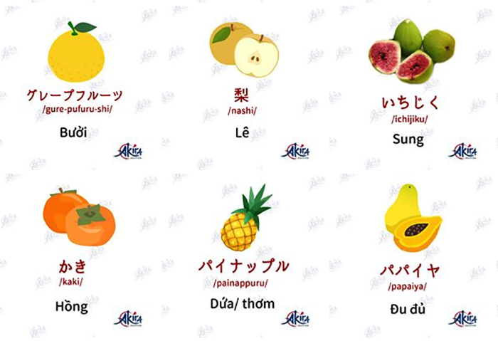 học tiếng nhật bằng tranh các loại quả